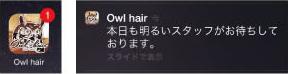 Owl Hair